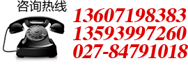 武汉电动道闸
